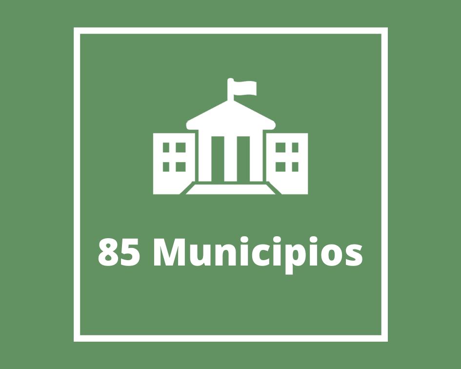 85 Municipios-1